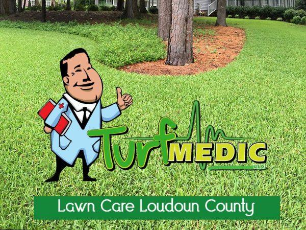Lawn Care Loudoun County