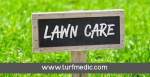 Lawn Care Fertilization